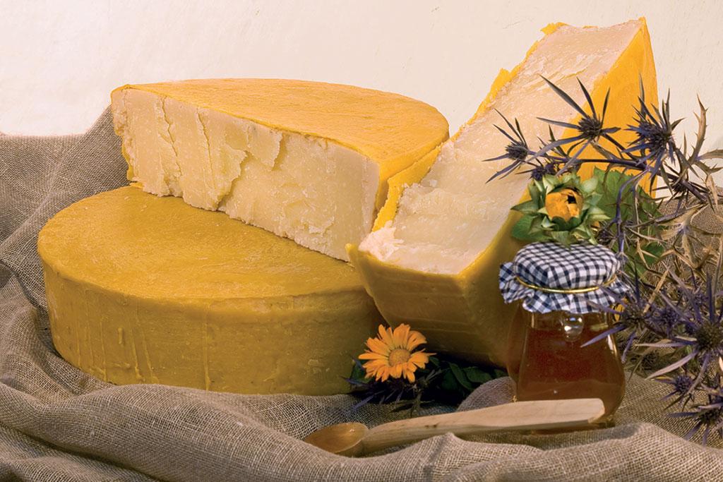 Organic cheese organcity