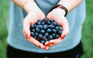 the beautiful story of organic certification