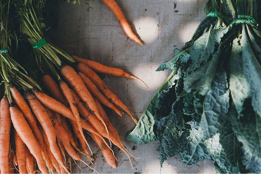agricultural revolution organicity