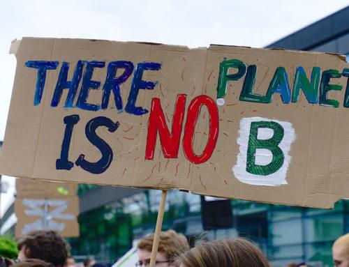 Stop climate change, choose organic