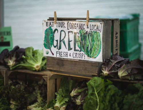 The organic food market in the USA