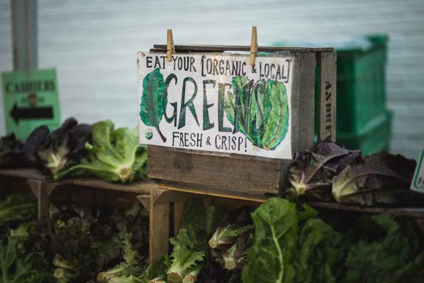 organic food market in the usa organicity
